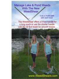 cut-lake-weeds