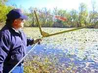 lake-weed-elimination